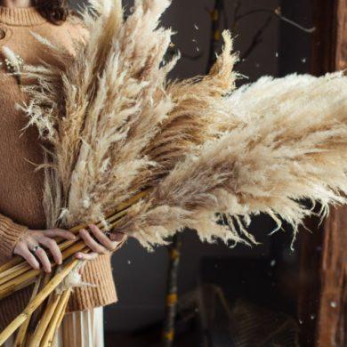 Trockenblumen für Bodenvasen: Frau hält Pampasgras in der Hand